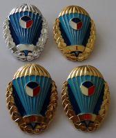Kompletní sada para odznaku používaná od roku 1993